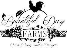 Beautiful-Day-Farms